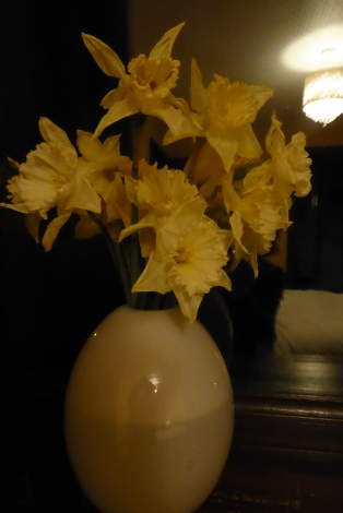 A house full of flowers (4)