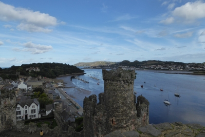 conwy-castle-with-penny-11th-sept-2016-11