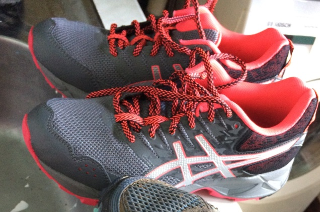 New trainers; muddy trainers April 2017 (1)