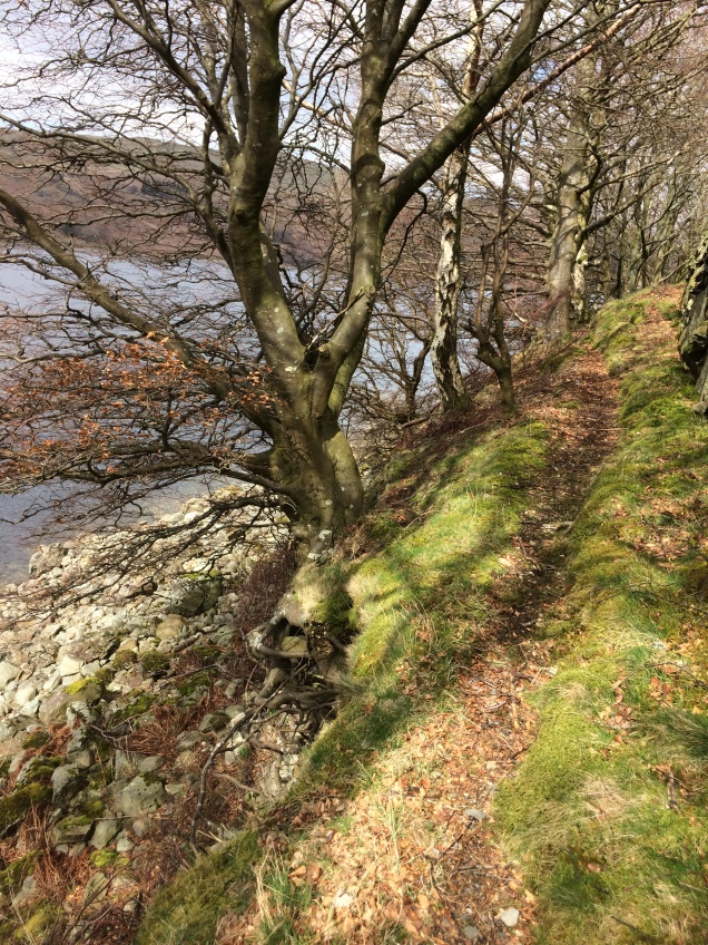 Haweswater 14th April (16)