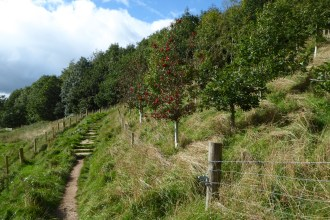 Hadrian's Wall 24th Sept (22)