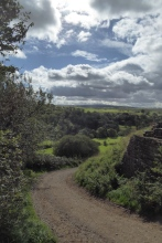Hadrian's Wall 24th Sept (26)